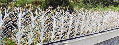 حفاظ روی دیوار لیلیوم
