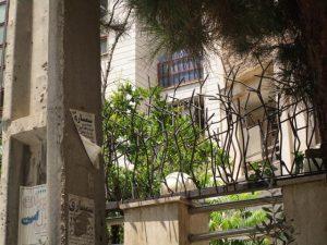 حفاظ شاخ گوزنی با تراکم پایین