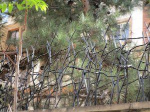 حفاظ شاخ گوزنی با برش گیوتین